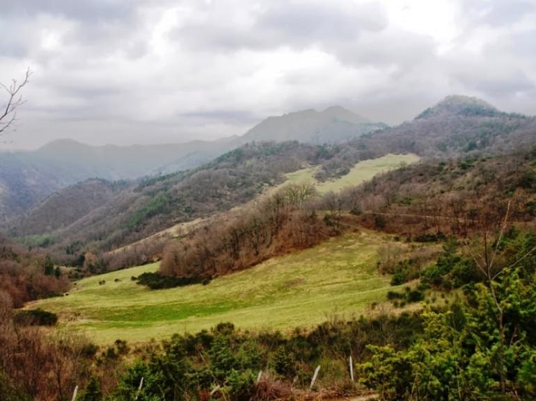 colline forlì cesena