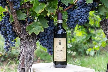 Vino Nobile di Montepulciano Riserva 2010 Carpineto